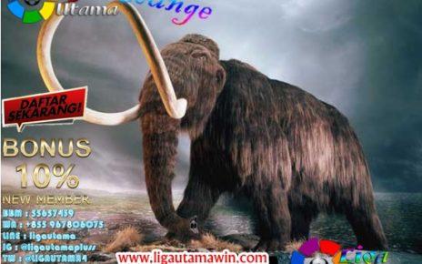 Misteri di Balik Kepunahan Mammoth, Gajah Berbulu Zaman ES